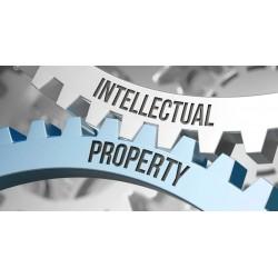 Corso proprietà intellettuale