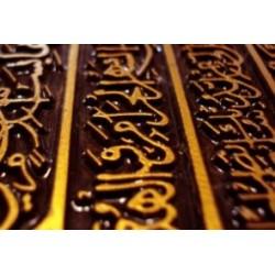 Corso di laurea università straniera in arabo
